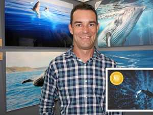 Whale of an achievement: Bay photographer an award finalist