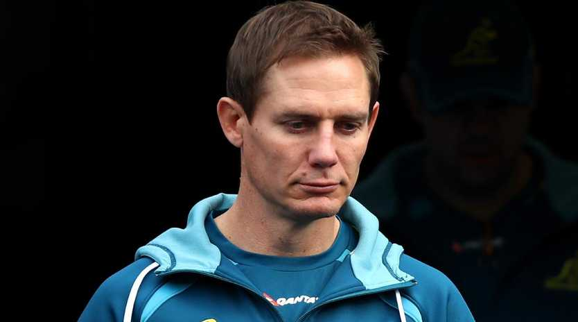 The Wallabies are on the hunt for a new attack coach after Stephen Larkham was told he was no longer required.