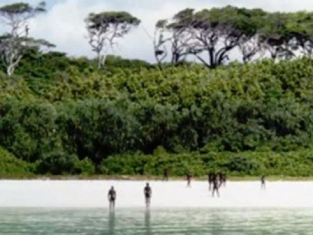 Members of the North Sentinelese tribe pictures on one of their remote island's beaches.
