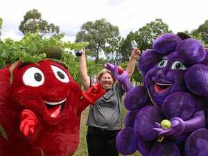 Organisers announce return of Apple and Grape festival