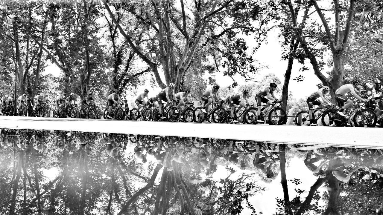Herald Sun Tour. Stage 5 around the Botanic Gardens. Picture: Michael Klein