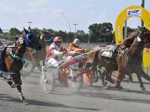 Call for harness racing return