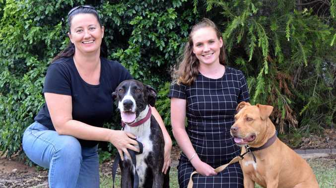 RESCUE RANGERS: CQ Pet Rescue manager Susan Consedine with Raven and foster carer Lauren McGovern with Tanner.