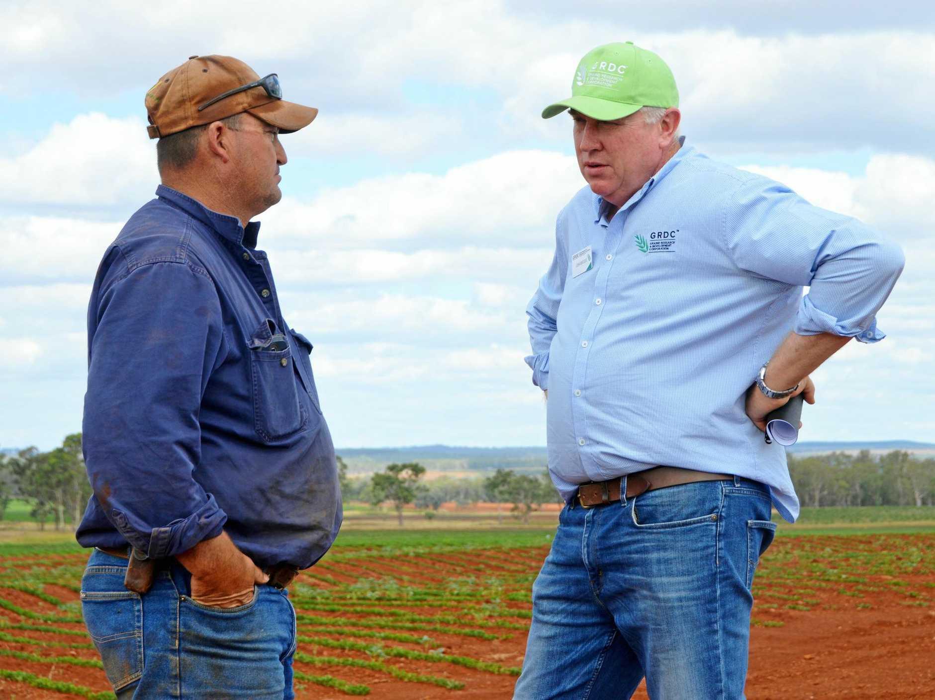 TALKING TRIALS: Farmer Peter Howlett and GRDC Northern Panel chairman John Minogue.