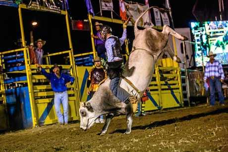 Bull and Bronc, Lachlan Dark U/18 Bull Ride