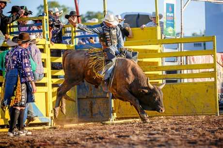 Bull and Bronc - Mark Johnstone Senior Bull Ride