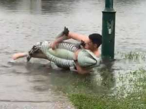 Dad wrestles mammoth 'croc' in floods
