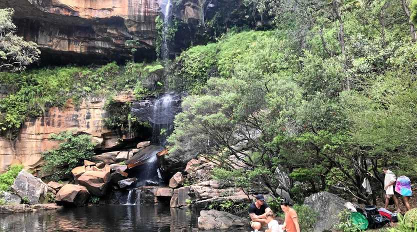The Blackdown Tablelands is the perfect spot to witness the regrowth after the recent fires, enjoy a picnic or just hang out.