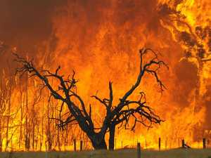 TOTAL FIRE BAN: Permits cancelled across south-west