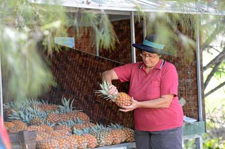 Elaine Bradley takes the top of a pineapple at Dagun Station.