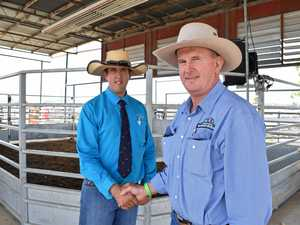 Breeders buck drought and put quality beasts on show