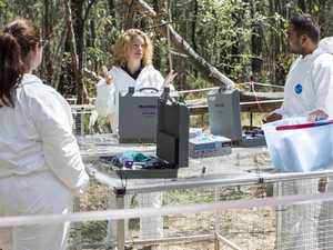 Secret spot where 19 bodies are decomposing