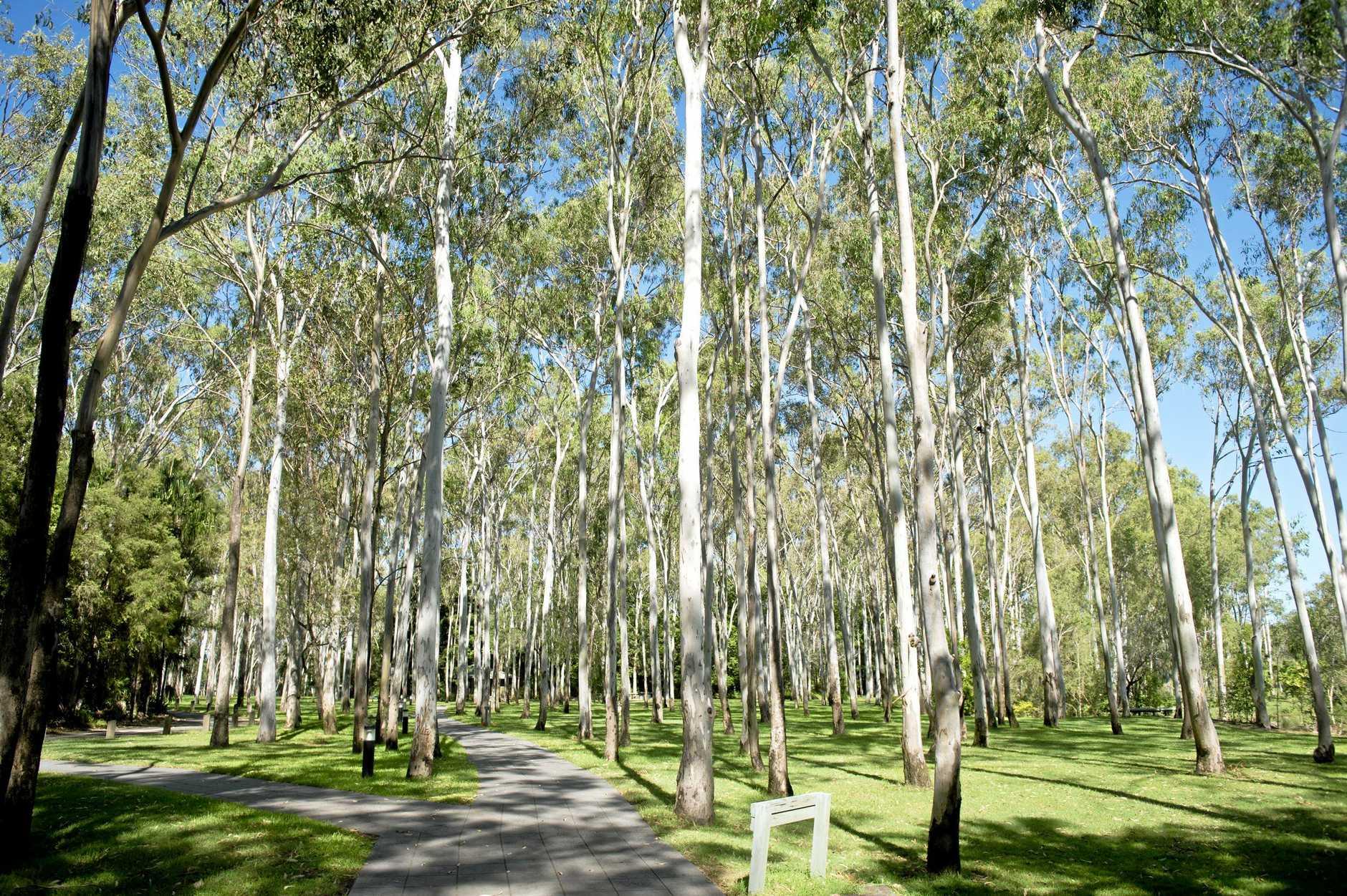 Tondoon Botanic Gardens.