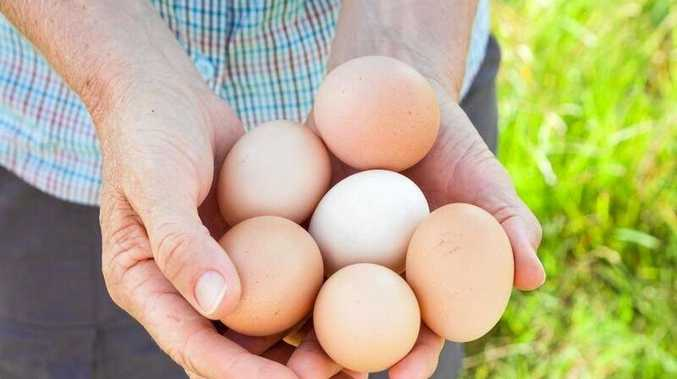 EGGS: Local business Freckle Farm saw a huge increase in their egg sales due to supermarkets struggling to stock shelves following heavy rain and flooding.