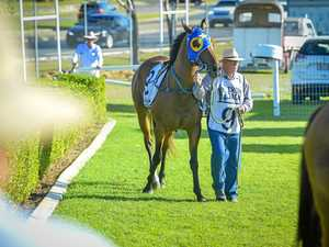 GALLERY: Mixed day for Gladstone trainers in twilight meet