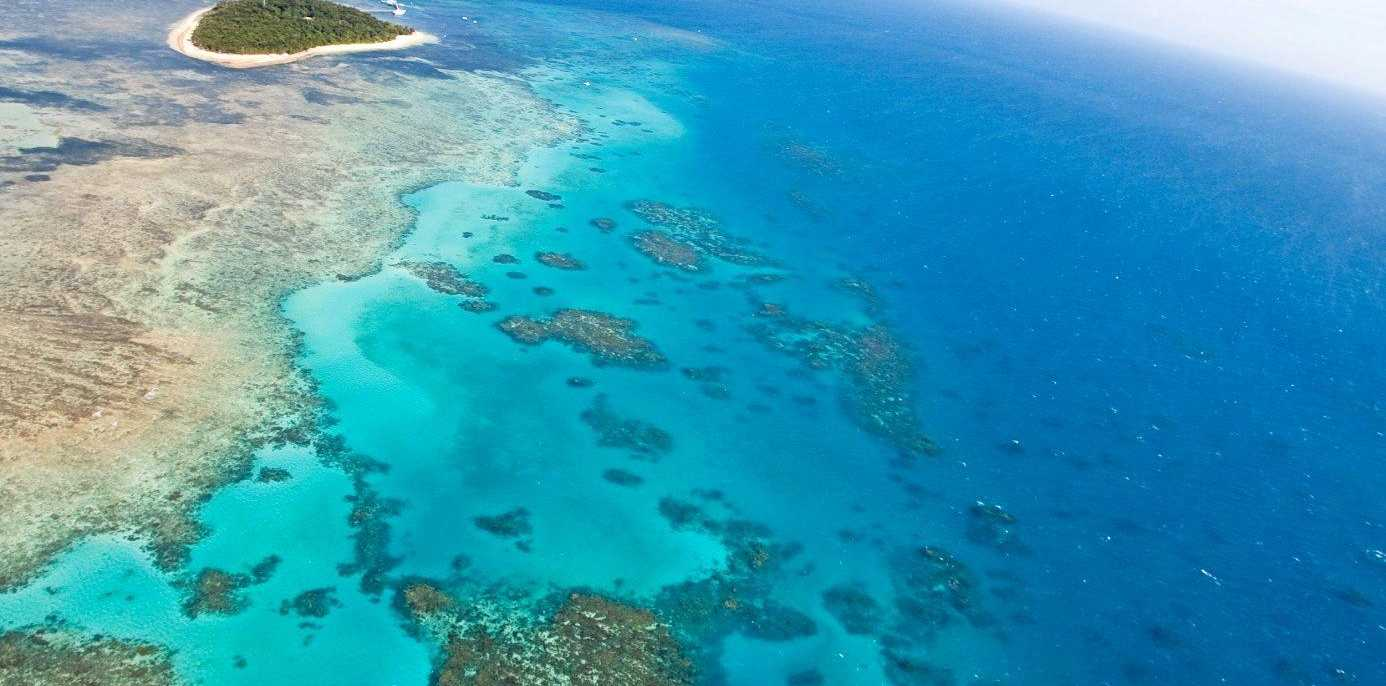 BUSTED: A commercial fisher has been fined for being in a Great Barrier Reef Marine Park green zone. File photo of the GBR.