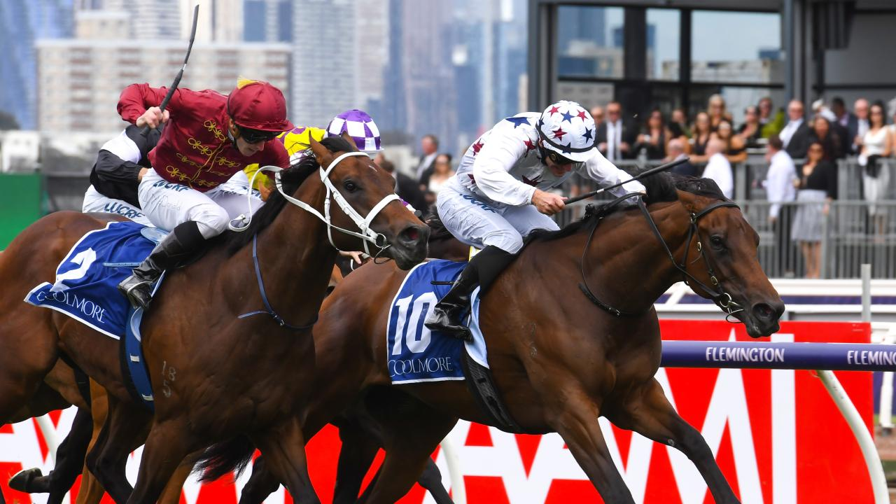 Sunlight is second favourite for the Lightning Stakes. (Photo by Vince Caligiuri/Getty Images)