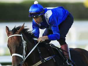 Winx fear frightens off triple Group 1 champion