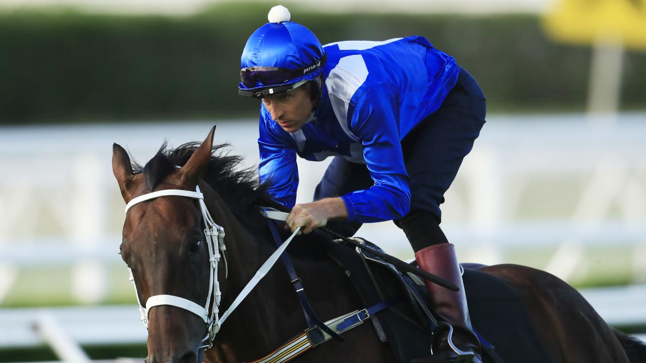 Winx returns in the Group 2 Apollo Stakes at Royal Randwick. (Photo by Mark Evans/Getty Images)