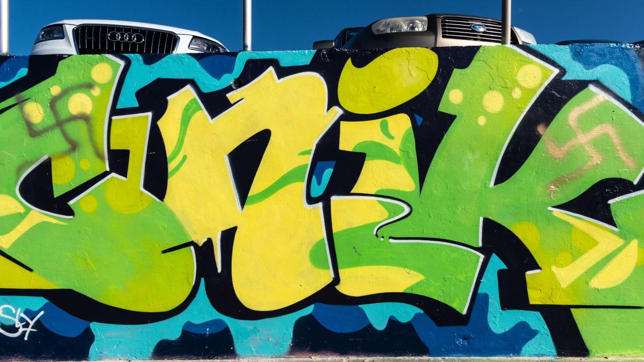 Police are investigating the offensive graffiti. Picture Monique Harmer
