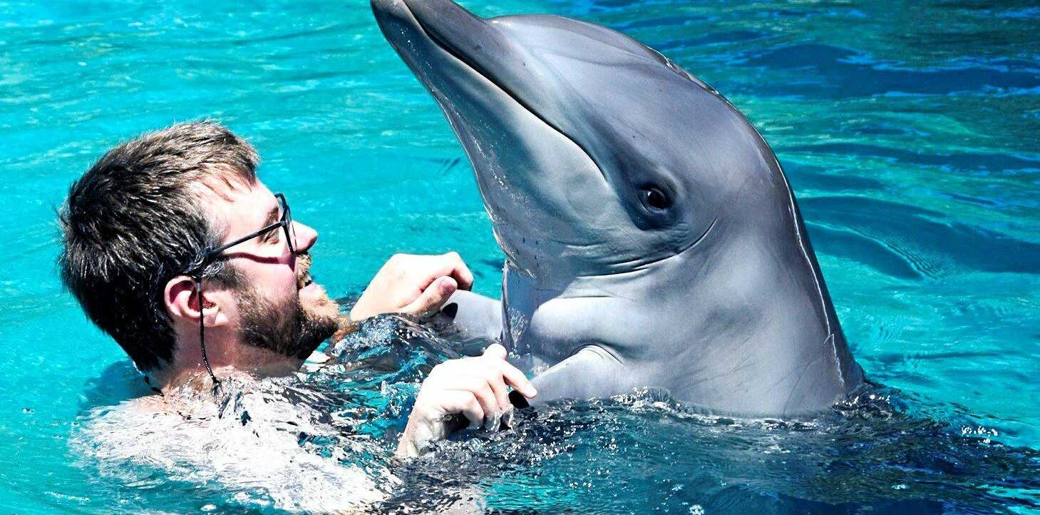 One of Coffs Harbour's most popular attractions has celebrated a name change to Dolphin Marine Conservation Park highlighting the rescue and rehabilitation work the marine park conducts on the Coffs Coast.