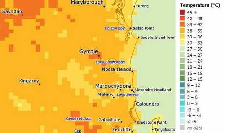 BoM's MetEye mapping showing the temperture prediction for 1pm on Wednesday. Gympie falls in the 39-42C category.