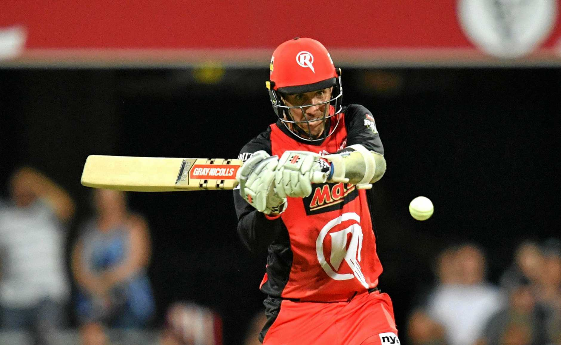 Tom Cooper swings the bat for the Melbourne Renegades.