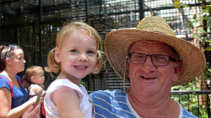HAPPY BIRTHDAY: Grandad Harold Underhill with grandaughter Mia, 3 at the zoo for Capri's first birthday.