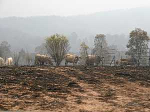 Disaster funding available for fire-stricken areas