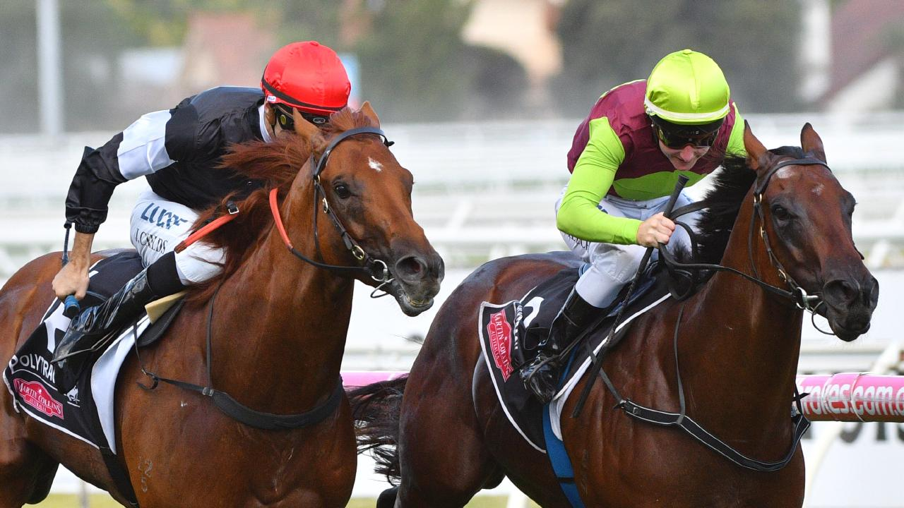 Written By runs second to Bons Away in the WJ Adams Stakes at Caulfield. Picture: Getty Images