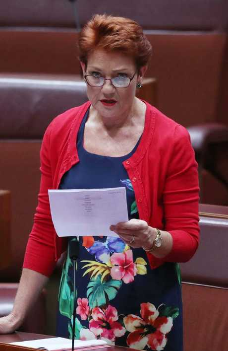 The One Nation leader made the extraordinary claims in the Senate last night. Picture: Gary Ramage