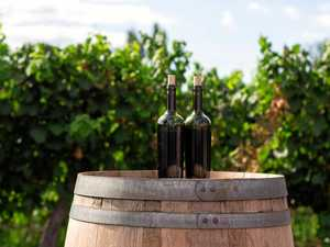 New affordable yet adventurous wines