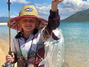 Fishing report: Watch for sharks as conditions improve