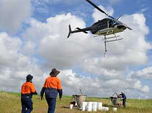 Helicopter operation targets mosquitoes