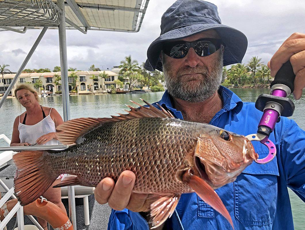 NICE CATCH: Inglewood resident Geoffrey Sonners caught this mangrove jack while on a Noosa River Fishing Safari.