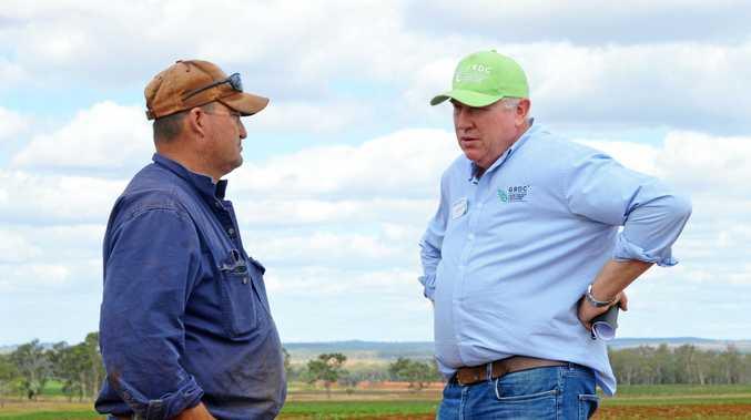 Researchers identify needs for South Burnett farmers