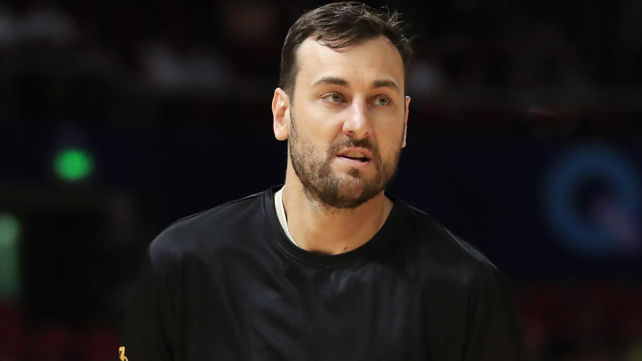Andrew Bogut has been dominant for the Sydney Kings. Picture: Getty Images