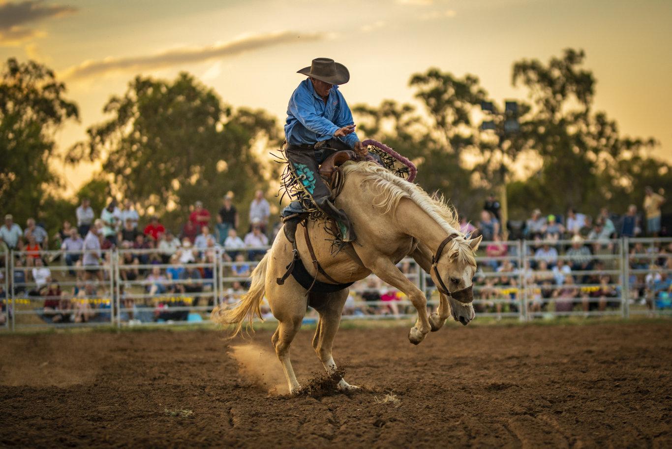Saddle bronc competitor - Chinchilla Melon Festival rodeo 150219