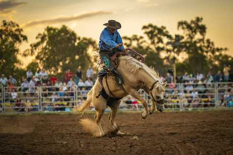 Saddle bronc competitor - Chinchilla Melon Festival rodeo 150219