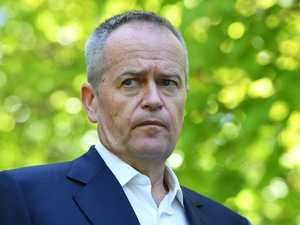 Poll shows Shorten a Labor liability