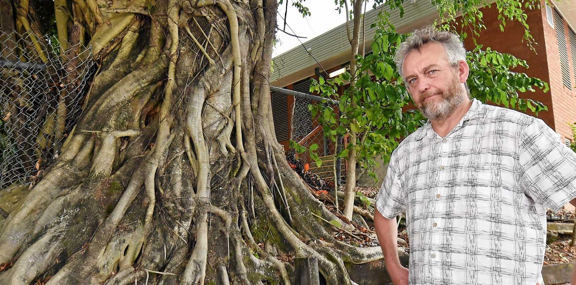 DON'T GO: Garrie James of Coffee Monkey cafe, Buderim, loves the fig tree outside the cafe however body corporate plans to remove it.