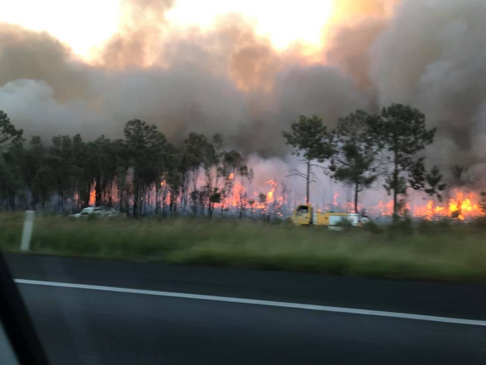 No homes or power lines were under threat from the blaze, but smoke may have affected nearby residents and drivers. Picture: Facebook/Mark Davenport