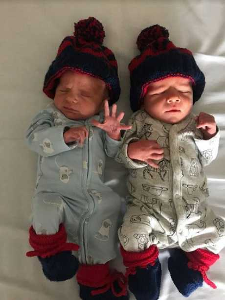 Sylvie (left) and Roy (right) have already been decked out in Melbourne colours. Picture: Daisy Pearce's Instagram
