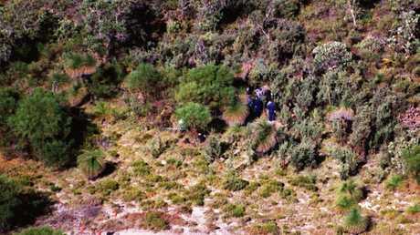 The bush track where the body of Ciara Glennon was found.