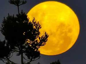 Keen stargazers enthralled with super moon
