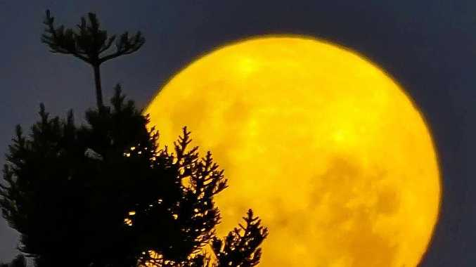 BRIGHT SIDE: Stargazers across Gladstone were treated to the largest super moon of the year.