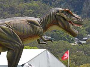 Palmer must pay after dinosaur resort 'conspiracy' claim