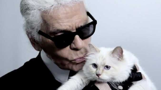 Lagerfeld, who died aged 85, last year declared his wish to be buried alongside his beloved kitty.