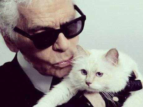 Karl Lagerfeld and his beloved cat, Choupette.  Picture:  Supplied