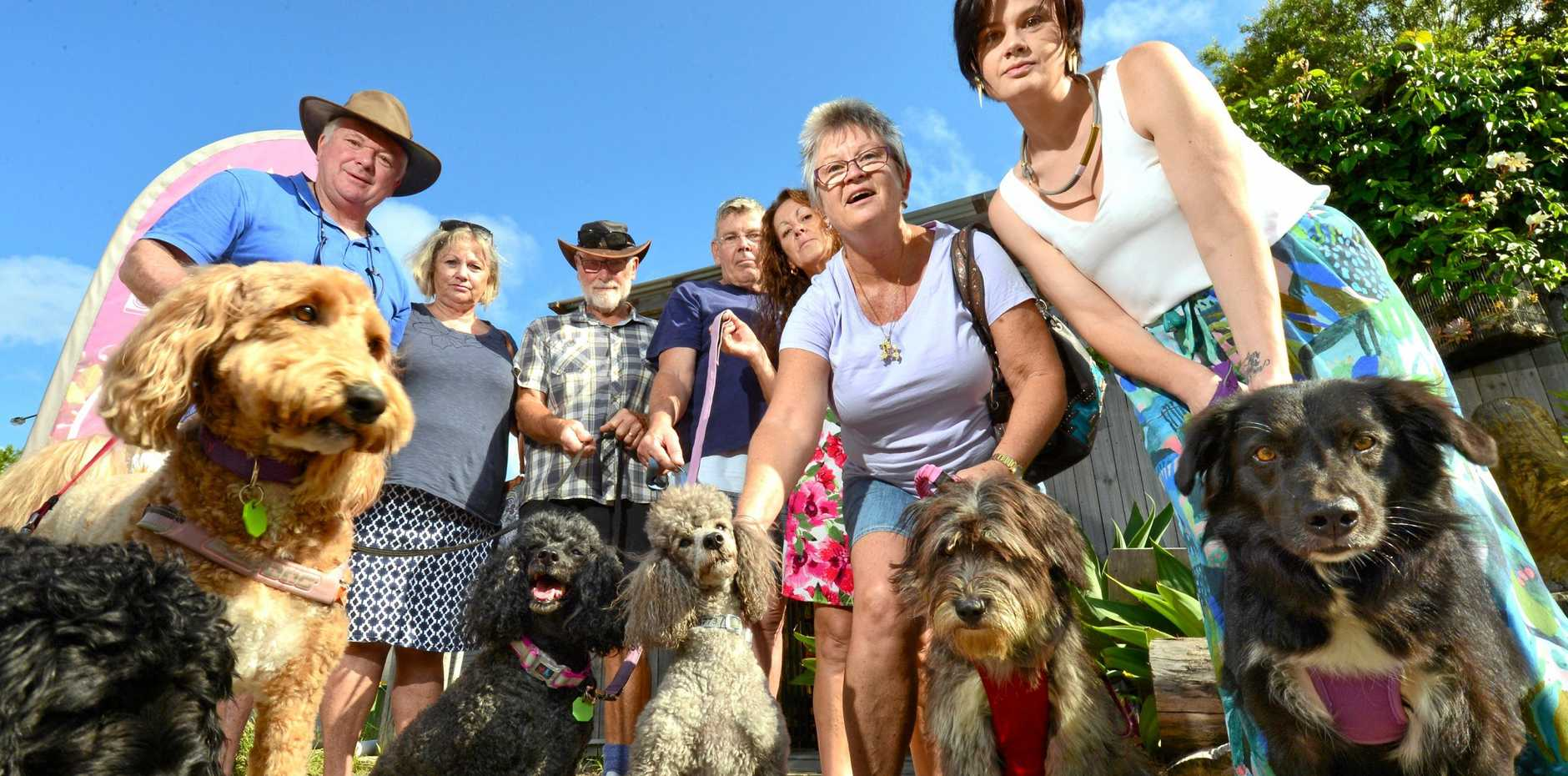Spill de Beans Cafe in Pomona patrons are protesting the Noosa Council plans to close their dog-friendly back gate which will severely hinder business. Greg and Julie Maxwell, Eddie Johnson, Greg Dawson, Grace Semprevoni, Julie Dawson and Amanda Bennetts.